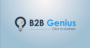 Presentazione B2BGenius (Splash Screen)